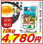 熊本県産 無洗米 森のくまさん 10kg 令和2年産 送料無料