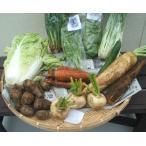 無農薬  露地栽培 季節の野菜セット 約10品目 熊本県産 (有機JAS認証 )