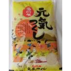 無洗米 元気つくし 5kg 福岡県産