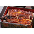 鰻の蒲焼 たれ付 2尾セット 国産 冷凍 うなぎ専門店の味