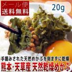 熊本県 天草・湯島産 手摘み乾燥めかぶ 20g メール便送料無料 ポイント消化