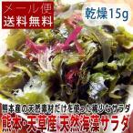 熊本県 天草産 天然海藻サラダ 乾燥 12g メール便送料無料 ポイント消化