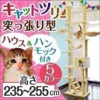 ottostyle.jp キャットツリー EAGLE TWIN TOWER  突っ張り式 ツインタワー  ベージュ  幅123cm 奥行40cm 高さ235 255cm ハンモック 爪とぎ