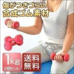 ダンベル 1kg 2個セット 合計2kg カラーダンベル 男女兼用 男性 女性 メンズ レディース 鉄アレイ 鉄アレー 筋トレ インナーマッスル 送料無料
