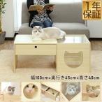 テーブル ローテーブル 猫 キャットハウス ペットハウス カフェテーブル 木製 引き出し 100cm ペットベッド ガラス 肉球 猫ベッド リビングテーブル 送料無料