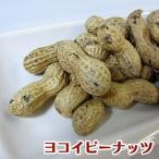【落花生】1kg ピーナッツ さや付 殻付き【ヨコイピーナッツ名古屋】