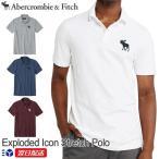 アバクロンビー&フィッチ 正規品 Abercrombie&Fitch 2020SS メンズ カノコ ビックロゴ ポロシャツ Exploded Icon Stretch Polo ホワイト グレー他