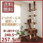 キャットタワー QQ80786 猫用 猫タワー 突っ張り型 爪とぎ おしゃれ 多頭飼い 麻ひも もこもこ