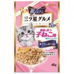 銀のスプーン  プレミアム  三ツ星グルメ  健康に育つ子猫用  離乳から12ヶ月  まぐろ入りかつお  40g