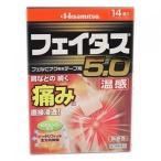 【第2類医薬品】フェイタス5.0 温感 14枚【セルフメディケーション税制対象】
