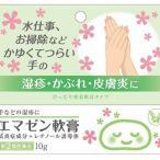 【第(2)類医薬品】エマゼン軟膏 10g