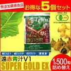 V1 SUPPER GOLD EX 1500粒 詰替用 5袋セット+1袋サービス 1611-5