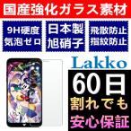 Disney Mobile on docomo DM-01K ガラスフィルム DM-01K フィルム 5.5インチ 気泡ゼロ 飛散防止 Disney Mobile DM-01K 液晶保護フィルム