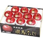 りんご 青森県産 飛馬ふじ 中玉10玉 約3kg JA相馬 12月中旬より発送 ギフト 御歳暮