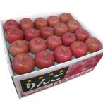 りんご 贈答サンふじ 約10kg 中玉40玉 JA津軽みらい 11月下旬より発送 ギフト 御歳暮