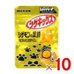 UHA味覚糖 シゲキックス シゲモンの足跡 エボリューションソーダ味 20g×10個[ボール販売] [送料無料対象外]