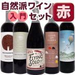 ワイン 赤ワイン 赤ワインセット 自然派 ビオ フランス 自然派入門の決定版!! 赤ワイン5本セット