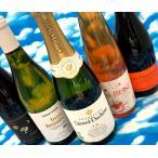 ワイン ワインセット 自然派ワイン 送料無料 お正月に飲みたい!  厳選!二万円セット オーガニック Bio