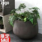 プランター 植木鉢 大型 コンクリート セメント ダークグレー おしゃれ 鉢 寄せ植え ガーデニング 12号 北欧家具 ZAGO シンプル モダン L4V01LDG
