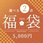 福袋 インテリア 雑貨 小物 ゴミ箱 照明 クッション よりどり2点五千円福袋 アウトレット ZA2PC01