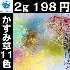ソフトミニカスミ草(プリザーブド) 2g 198円 ハーバリウム 花材 材料 カスミ草 かすみ草 カスミ草 手作り