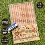 名入れ 鉛筆 ウッディねーむ鉛筆 2B HB 4B (消しゴムセット) 卒園 記念品 オリジナル えんぴつ 木目 ウッド