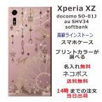エクスペリアXZ ケース Xperia XZ SO-01J カバー 送料無料 スワロケース 名入れ ジェル風 ドリームランド