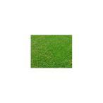 ロール人工芝(芝丈30mm)幅1m×長さ2m SST-FME-3002 ガーデニング イングリッシュ ガーデン 庭 屋外 おしゃれ オシャレ 人工芝