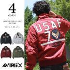 AVIREX アヴィレックス MA-1 USAF 70th 限定 タ...--28944