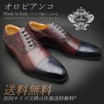 Orobianco オロビアンコ MONZA ストレートチップメダリオンシューズ モンツァ ブルー / ボルドー / ブルー 靴 メンズ ビジネスシューズ 本革 革靴