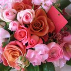 デザイナーにお任せ  お見舞い 超キュ�ト季節のお花いっぱいのフラワーアレンジメント FrowerCafe