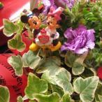 誕生日プレゼント 鉢植え ディズニー フラワーギフト ミッキー ミニー バースデーA ミックスプランツ