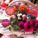 母の日 花 寄せ植え スヌーピー &フレンズ マスコット 3個入り チャリー ウッドストック ベル…etc ◆カーネーションもいいけど寄せ植えも可愛い♪