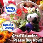 スヌーピー フラワーギフト 鉢植え ミックスプランツ スヌーピー ストラップ付き ◆スヌーピーカラー・お花はデザイナーにおまかせ♪
