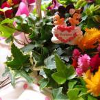 ディズニー フラワーギフト 鉢植え ミックスプランツ ディズニー ウェディングA ミッキー ミニー付き ◆お花はデザイナーにおまかせ♪
