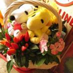 スヌーピー ウッドストック フラワーギフト 鉢植え スヌーピー入り ミックスプランツ ◆デザイナーにおまかせ鉢花♪