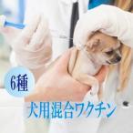 犬用 混合予防ワクチン6種 地域限定で往診によるワクチン接種できます! 【往診対応地域の方のみお買い上げ可能】