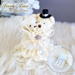 テディベア リングピロー リングケース リングボックス 結婚式 結婚祝い サプライズ アクセサリーケース 可愛い クマ くま ぬいぐるみ ジュエリーボックス