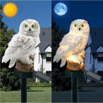 フクロウ 置物 かわいい 置物ライト 夜間自動点灯 昼自動消灯 暖色 芝生 玄関先 庭 ガーデン ベランダ 屋外 装飾 おしゃれ