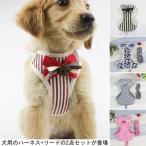 犬服 ハーネス&リード 2点セット ドッグウエア 小型犬 ペット服 中型犬 犬用 胴輪 ペット用品 ドッグ服 首輪
