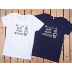 当店オリジナル/ジンジャー半袖Tシャツ・全3色3サイズ フラダンス ショップ ハワイアン フラガール スカート 衣装 ウィッグ 小物 ブラウス レイ
