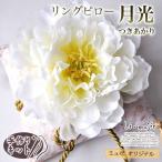 リングピロー 和風 手作りキット 手作り 和婚 クッション 挙式 結婚式 月光キット