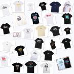 STUSSY ステューシー Tシャツ 半袖 カットソー ベーシクロゴ Tシャツ 半袖 カットソー(ランダム在庫あり)