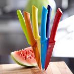 スキャンパン scanpanユーティリティナイフ (選べる5色)北欧 / 包丁 / 調理器具