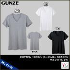 ショッピンググンゼ グンゼ yg シャツ GUNZE メンズ 綿100% COTTON100%[ALL SEASON] Vネック半袖Tシャツ(M・L・LL・3Lサイズ)YV0015