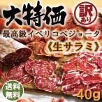 訳あり サラミ イベリコ豚 サルチチョン イベリコ デ ベジョータ 6ヶ月熟成 40g ポイント消化 単品