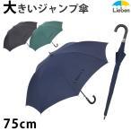傘 かさ カサ メンズ 大きい傘 LIEBEN-0162