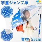 傘 子供 キッズ 青空 55cm×8本骨 長傘 雨具 LIEBEN-0380