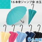 傘 かさ カサ レディース 16本骨 LIEBEN-0494