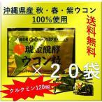 ポイント消化 送料無料 900 ウコン クガニ発酵 琥珀発酵 1袋(5粒)×20袋セット お試し バラ売り
